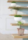 植物与空间0150,植物与空间,生活,几个盆栽