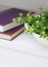 植物与空间0156,植物与空间,生活,书籍