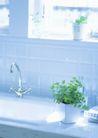 植物与空间0170,植物与空间,生活,水龙头