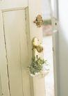 植物与空间0189,植物与空间,生活,房门 装饰物