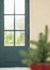 植物与空间0195,植物与空间,生活,一扇门