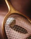 静物0074,静物,静物,网球 球拍 网格