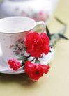 花艺摆设0298,花艺摆设,风景,咖啡杯 桌面 玫瑰花