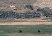 西藏风光0023,西藏风光,文化,拉萨 风景 马匹