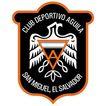 足球队及足球职业联赛相关标志0013,足球队及足球职业联赛相关标志,LOGO专辑,足球队标志