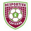 足球队及足球职业联赛相关标志0202,足球队及足球职业联赛相关标志,LOGO专辑,