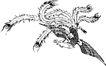 古典矢量花纹0009,古典矢量花纹,中国古典画,