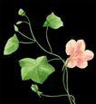 古典花卉底纹0001,古典花卉底纹,中国古典画,