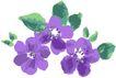 古典花卉底纹0014,古典花卉底纹,中国古典画,淡雅花式 三朵花