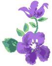 古典花卉底纹0015,古典花卉底纹,中国古典画,水粉花卉 紫色晕染