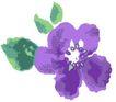 古典花卉底纹0017,古典花卉底纹,中国古典画,紫色花瓣