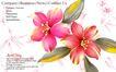 古典花卉底纹0023,古典花卉底纹,中国古典画,效果 艺术 作画