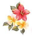 古典花卉底纹0028,古典花卉底纹,中国古典画,灿烂 花朵 水粉