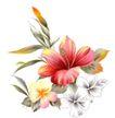 古典花卉底纹0029,古典花卉底纹,中国古典画,湘绣 素描 生机