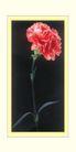 梅兰竹菊0048,梅兰竹菊,中国古典画,