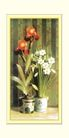 梅兰竹菊0051,梅兰竹菊,中国古典画,盆景 大红花 瓷盆