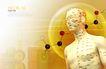 医疗0003,医疗,韩国花纹Ⅲ,人体 穴位 构造