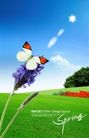 景物静物0131,景物静物,韩国花纹Ⅲ,蝴蝶 无边 草坪