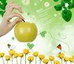 景物静物0162,景物静物,韩国花纹Ⅲ,苹果 蝴蝶 黄玫瑰