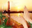 景物静物0163,景物静物,韩国花纹Ⅲ,飞翔 泡泡 夕阳