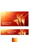 花纹0130,花纹,韩国花纹Ⅲ,花蕊 阳光照射 闪光