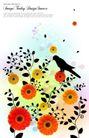 花纹0159,花纹,韩国花纹Ⅲ,小鸟 菊花 美丽