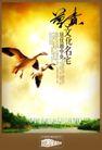 地产档案20094,地产档案2,地产档案,尊贵 飞鸟 环境