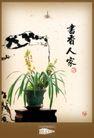 地产档案20099,地产档案2,地产档案,书香人家 花草 盆栽