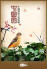 地产档案20101,地产档案2,地产档案,中国风 文化 精髓