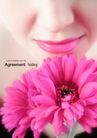 化妆品0034,化妆品,版式设计,粉唇 红菊 微笑