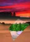 建筑风景0090,建筑风景,版式设计,夕阳  植物 森林