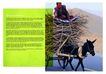 建筑风景0098,建筑风景,版式设计,驴子 农民 柴