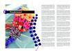 花卉0003,花卉,版式设计,花卉 展示 宣传