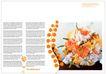 花卉0006,花卉,版式设计,
