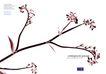 花卉0021,花卉,版式设计,花店 花艺 插花
