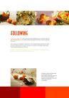 餐饮0157,餐饮,版式设计,水果 甘甜 英语