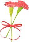 其他纪念日0030,其他纪念日,节日喜庆,花色 蝴蝶结 植物