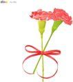 其他纪念日0031,其他纪念日,节日喜庆,康乃馨 红色彩带 蝴蝶结
