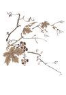 竹子荷花植物0014,竹子荷花植物,节日喜庆,葡萄藤 葡萄叶 植物