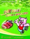 食品0076,食品,精品广告设计,小猪 新鲜肉快 绿色背景