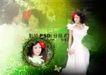 浪漫柔情模板10074,浪漫柔情模板1,浪漫柔情模板,浪漫婚纱照 绿叶陪衬 红头花