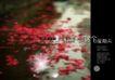 浪漫柔情模板30079,浪漫柔情模板3,浪漫柔情模板,雅致模块 水面漂着花瓣 白花光束