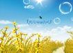 地产设计师专辑40083,地产设计师专辑4,地产设计师,开花 黄色的 春天