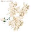 单朵艳丽配色花纹0019,单朵艳丽配色花纹,人物,绿芽