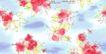 单朵艳丽配色花纹0032,单朵艳丽配色花纹,人物,黄叶 红花 飞舞