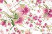 单朵艳丽配色花纹0034,单朵艳丽配色花纹,人物,艳丽花式 粉色花朵
