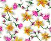 单朵艳丽配色花纹0046,单朵艳丽配色花纹,人物,