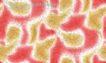 墨色精品花纹0036,墨色精品花纹,人物,黑色线条 红黄交错 白边