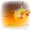 天使插画0031,天使插画,人物,满天繁星 金黄的月亮 枫叶