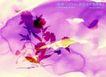 水彩背景及其花纹0078,水彩背景及其花纹,人物,水彩花世界 紫色风格 花影